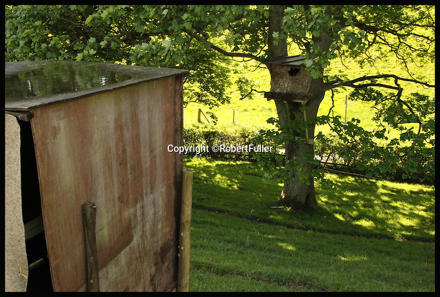 BNPS.co.uk (01202 558833)<br /> Pic: RobertFuller/BNPS<br /> <br /> Showing where the box is in Mr Fuller's garden.<br /> <br /> Brawling birds in nest ding dong...<br /> <br /> The gloves were off and the feathers were flying as these two birds of prey went wing-to-wing over a nesting box.<br /> <br /> This incredible footage shows a kestrel and a barn owl fighting it out for the prime spot to lay their eggs.<br /> <br /> The pair circle their boxing ring, staring each other down before attacking with talons and beaks in the hour-long stand-off.<br /> <br /> The bird brawl was captured by wildlife photographer Robert Fuller on a nestcam he had set up inside a 13ft-high old elm tree stump.