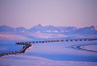 The Trans Alaska oil pipeline, James Dalton Highway, (haul road) Brooks range, Arctic, Alaska.