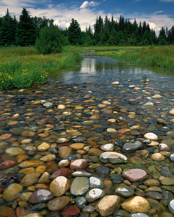 Rocky shore of the Snake River; Grand Teton National Park, WY