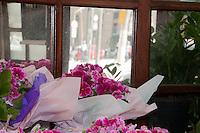 SÃO PAULO-SP-23,09,2014- PRIMAVERA-A estação das flores chegou em São Paulo.Local:Sé,região central da cidade de São Paulo,nesse Terça-Feira,23(Foto:Kevin David/Brazil Photo Press)