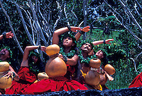 Hula dancing with ipu's, Hawaiian ceremonies. Kilauea Volcano. Big Island. Hawaii