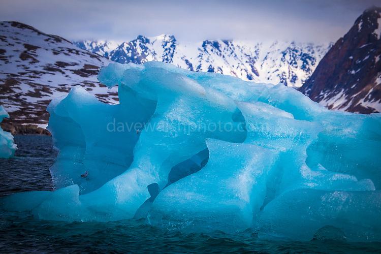 Blue iceberg in Kongsfjord, Ny Alesund, Svalbard
