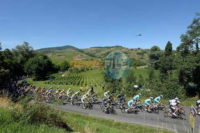 The peloton pass through Beaujolais wine country during Stage 12 of the 2014 Tour de France running 185.5km from Bourg-en-Bresse to Saint Etienne. 17th July 2014.<br /> Photo ASO/B.Bade/www.newsfile.ie