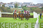 Action from the races in Listowel last Friday afternoon