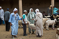 Rissani, Morocco.  Men Discussing Sale of Sheep in the Livestock Market.