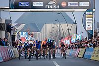 German National Champion Pascal Ackermann (GER/Bora Hansgrohe) wins the sprint before Kristoffer Halvorsen (NOR/Team Sky) and Alvaro Hodeg (COL/Deceuninck Quick Step)<br /> <br /> Bredene Koksijde Classic (2019) ( former Handzame Classic )<br /> Bredene > Koksijde 199km (BEL)<br /> <br /> ©kramon