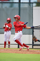 GCL Phillies West Luis Rojas (2) bats during a Gulf Coast League game against the GCL Tigers West on July 27, 2019 at the Carpenter Complex in Clearwater, Florida.  (Mike Janes/Four Seam Images)