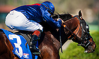 Mr. Commons with Brice Blanc up in the Del Mar Mile at Del Mar Race Course in Del Mar, California on August 26, 2012.