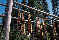 USA, Alaska, Räuchern von Lachs im Chena Indian Village bei Fairbanks