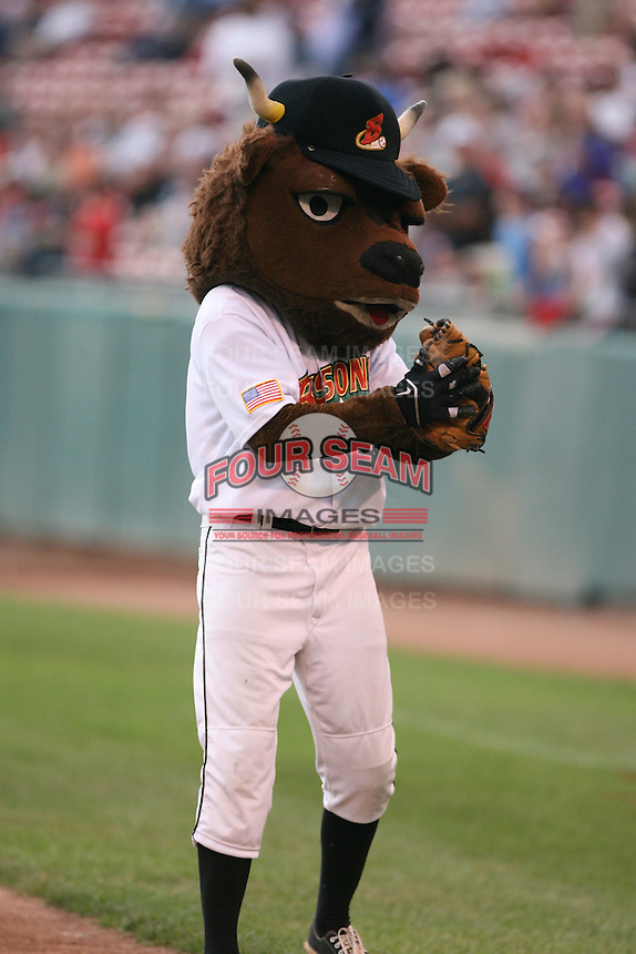 August 25th, 2007:  Buster T. Bisons, the Buffalo Bisons mascot during the Hall of Fame Induction at Dunn Tire Park in Buffalo, NY.  Photo by Mike Janes/Four Seam Images