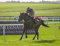 THE CURRAGH, CO. KILDARE - SEPTEMBER 10: Order of St George #4, ridden by Ryan Moore, wins the G1 Irish St. Leger at The Curragh in Co. Kildare, Ireland. (Photo by Sophie Shore/Eclipse Sportswire/Getty Images)