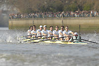London, GREAT BRITAIN,  Cambridge UBC,  as the crew moves along The Fulham Wasll, during the 2007 Boat Race between Putney to Mortlake, on  Sat. April 7th. England [Photo Peter Spurrier/Intersport Images].CAMBRIDGE BLUE BOAT, bow, Kristopher McDaniel, Dan O?Shaughnessy, Peter Champion, Jacob (Jake) Cornelius, Tom James [President], Kieran West, Sebastian Schulte, Thorsten Engelmann, cox, Rebecca Dowbiggin Varsity Boat Race, Rowing Course: River Thames, Championship course, Putney to Mortlake 4.25 Miles,