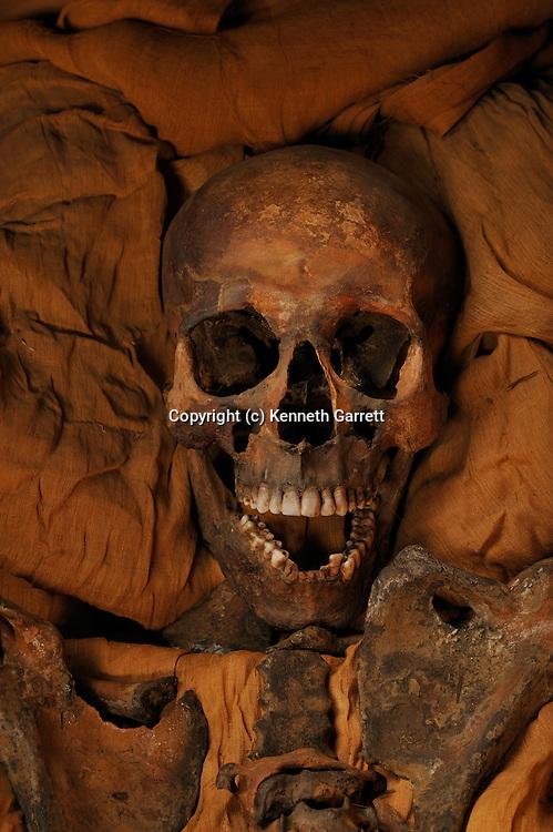 mm7864, 18th Dynasty, New Kingdom, Egypt, The Egyptian Museum, Cairo, Akhenaten, coffin, KV55