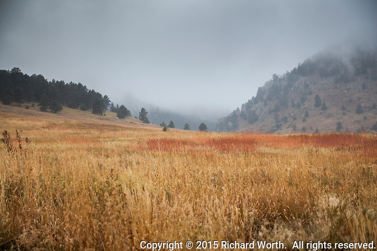 Fog blankets the Rocky Mountain foothills and grasslands leading up to them at Chautauqua Park in Boulder, Colorado.