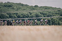 Team SKY leading the peloton in service of yellow jersey Geraint Thomas (GBR/SKY) &amp; team leader Chris Froome (GBR/SKY)<br /> <br /> 104th Tour de France 2017<br /> Stage 4 - Mondorf-les-Bains &rsaquo; Vittel (203km)