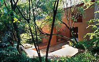 A view of Dina Prinsloo's modern vernacular house through the trees in her garden