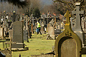 TO GO WITH A RORY CARROLL Story on CAIN the archive of the Troubles that is under threat.  General views of Milltown Cemetery in west Belfast. Picture by Paul McErlane