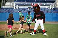 Young Batavia Muckdogs fans high five mascot Homer after running the bases after a game against the West Virginia Black Bears on June 25, 2017 at Dwyer Stadium in Batavia, New York.  Batavia defeated West Virginia 4-1 in nine innings of a scheduled seven inning game.  (Mike Janes/Four Seam Images)