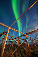 Northern Lights shine in sky over empty stockfish drying racks, Ballstad, Vestvågøy, Lofoten Islands, Norway