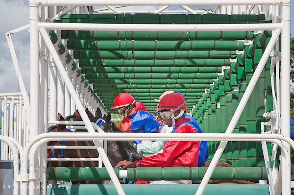 Horse Racing, Santa Rosa Park, Arima,jockeys in the starting gate