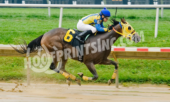 Critical Alert winning at Delaware Park on 9/3/12