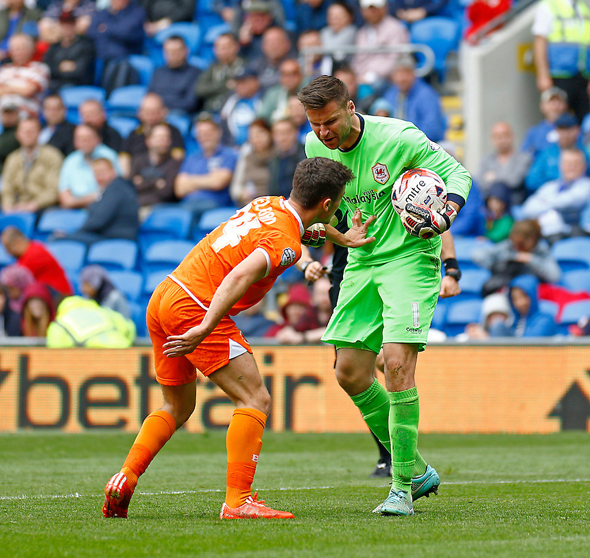 Cardiff City's David Marshall upset with Blackpool's Dom Telford<br /> <br /> Photographer Simon King/CameraSport<br /> <br /> Football - The Football League Sky Bet Championship - Cardiff City v Blackpool - Saturday 25th April 2015 - Cardiff City Stadium - Cardiff<br /> <br /> &copy; CameraSport - 43 Linden Ave. Countesthorpe. Leicester. England. LE8 5PG - Tel: +44 (0) 116 277 4147 - admin@camerasport.com - www.camerasport.com