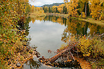 Idaho, North, Shoshone county,  Kingston, Enaville. A calm stretch of the Coeur d'Alene River in autumn as viewed from the rails to trails bridge. Trail of the Coeur d'Alenes.