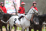 February 17, 2020: Silver Prospector (2) with jockey Ricardo Santana Jr. aboard before the Southwest Stakes at Oaklawn Racing Casino Resort in Hot Springs, Arkansas on February 17, 2020. Justin Manning/Eclipse Sportswire/CSM