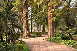 Lakeside Gardens - Lakeside gardens at Hoan Kiem Lake, Hanoi, Vietnam