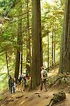 Mountain Lake, Moran State Park, WA. Trail to Cascade Falls.
