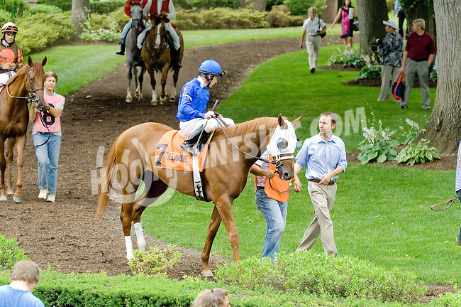 Captivating Lass before The Go For Wand Stakes at Delaware Park on 6/11/12