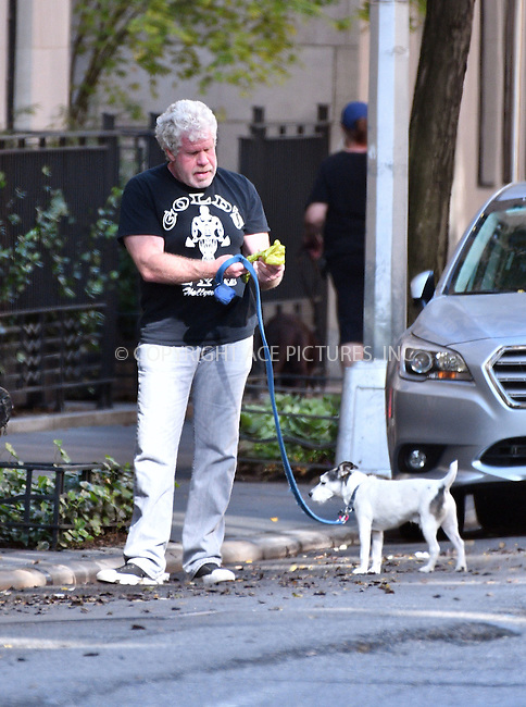 www.acepixs.com<br /> <br /> October 19 2016, New York City<br /> <br /> Actor Ron Perlman walks his dog Nigel in the West Village on October 19 2016 in New York City<br /> <br /> By Line: Curtis Means/ACE Pictures<br /> <br /> <br /> ACE Pictures Inc<br /> Tel: 6467670430<br /> Email: info@acepixs.com<br /> www.acepixs.com