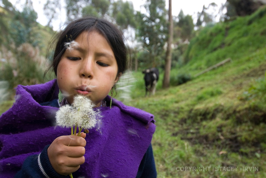 Gloria did a few somersaults down a steep hill and picked some dandelions to blow my way before beginning her daily chore of milking the family cow. After she milks the cow, Gloria carries a large jug back up the hill and down the road to a small cheese-making facility in the village.