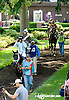 Bohemian Dance before The Justakiss Stakes at Delaware Park racetrack on 6/5/14
