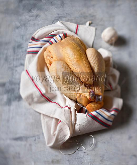 Europe/France/Aquitaine/40/Landes: Poulet fermier des Landes - Stylisme : Valérie LHOMME // France, Aquitaine, Landes, Landes chicken farmer,