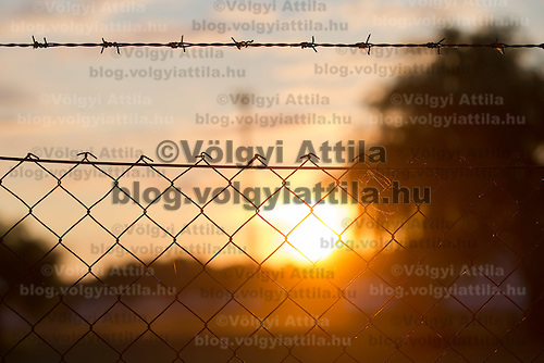 A fence is seen in the sunrise on the outskirt of Szeged (about 173 km South-East of capital city Budapest), Hungary on July 16, 2015. ATTILA VOLGYI