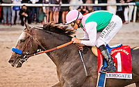 HALLANDALE BEACH, FL - JAN 28: Arrogate #1, ridden by Mike Smith, wins the $12,000,000 Pegasus World Cup Invitational the Pegasus World Cup Invitational Day at Gulfstream Park Race Course on January 28, 2017 in Hallandale Beach, Florida. (Photo by Arron Haggart/Eclipse Sportswire/Getty Images)