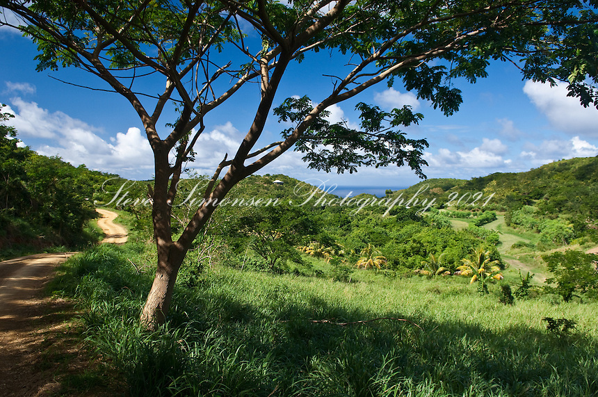 The view from the Virgin Islands Sustainable Farm Institute St. Croix, VI