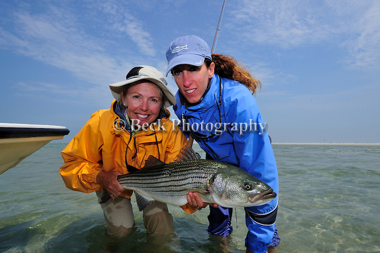 Cathy Beck's Striped Bass