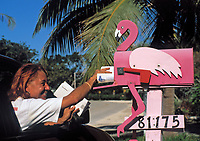 USA, Florida Keys - Islamorada: Pelikan  Briefkasten | USA, Florida Keys - Islamorada: Pelican letterbox