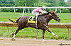 Captain Lewis winning at Delaware Park on 6/6/13