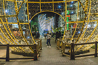 Christmas Lights, San Pedro de Alcantara, Malaga Province, Spain, November, 2018, 201811300078<br /><br />Copyright Image from Victor Patterson, 54 Dorchester Park, <br />Belfast, UK, BT9 6RJ<br /><br />t1: +44 28 9066 1296 (from Rep of Ireland 048 9066 1296)<br />t2: +44 28 9002 2446 (from Rep of Ireland 048 9002 2446)<br />m: +44 7802 353836<br /><br />victorpattersonbelfast@gmail.com<br /><br />Please see my Terms and Conditions of Use at victorpatterson.com. It is IMPORTANT that you familiarise yourself with them.<br /><br />Images used on the Internet incur an additional cost and must be visibly watermarked i.e. &copy; Victor Patterson within the body of the image and copyright metadata must not be deleted. Images used on the Internet have a size restriction of 4kbs and are chargeable at rates available at victorpatterson.com.<br /><br />This image is available only for the use of the download recipient i.e. television station, newspaper, magazine, book publisher, etc, and must not be passed on to any third party. It is also downloaded on condition that each and every usage is notified within 7 days to victorpattersonbelfast@gmail.com<br /><br />The right of Victor Patterson (or the named photographer) to be identified as the author is asserted in accordance with The Copyright Designs And Patents Act (1988). All moral rights are asserted.