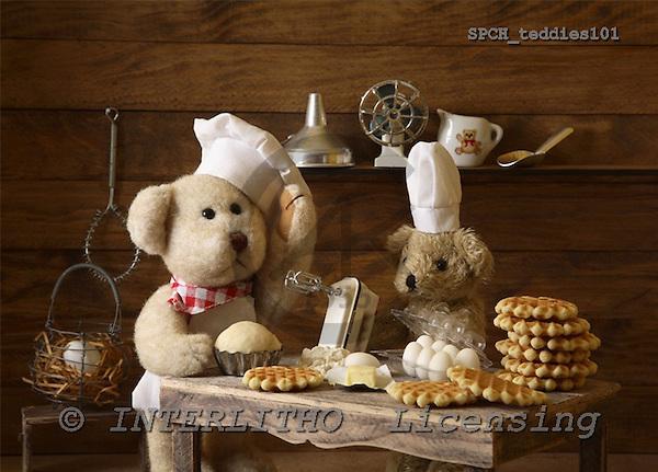Xavier, CUTE ANIMALS, teddies, photos, SPCHTEDDIES101,#ac#