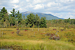 Mt. Monadnock in southern New Hampshire USA