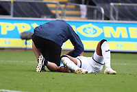 5th July 2020; Liberty Stadium, Swansea, Glamorgan, Wales; English Football League Championship, Swansea City versus Sheffield Wednesday; Rhian Brewster of Swansea City receives treatment to his shoulder late in the second half