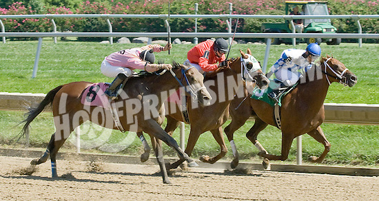 Harrow Land winning at Delaware Park on 9/1/09