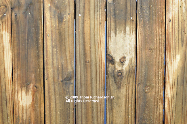 Fox made by knot holes in a wooden fence.
