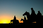Early morning trackwork at Flemington racecourse. - pic by Trevor Collens.