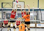 2016-01-09 / Volleybal / Seizoen 2015-2016 / Dames Geel &ndash; Herenthout / Willems (l.) en Van Noten (Geel) proberen de smash van Danis te onderscheppen<br /><br />Foto: Mpics.be