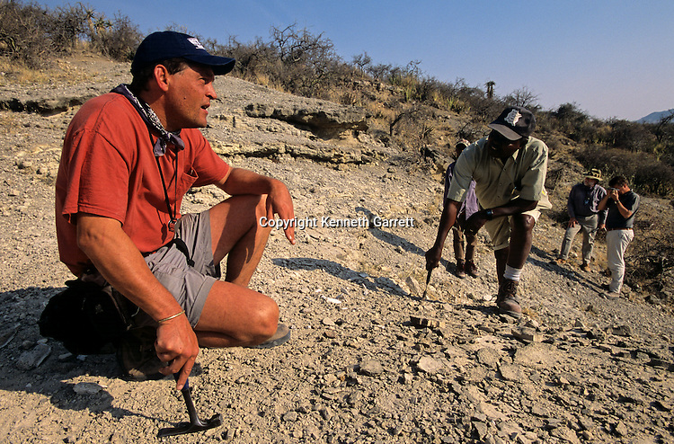 archaeology, artifact, Australalopithecus afarensis, Australopithecines, bipedalism, Dawn of Humans, DOH, excavate, excavation, Find Site, fossil, fossil-hunting, Hominid, Hominin, hominins, Homo erectus, Human EV - Australo, human evolution, New Hominids